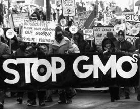 GMO-Protest