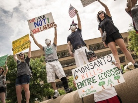 march-against-monsanto-rally-in-dallas_003917